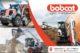 Bobcat zuid nederland 80x53